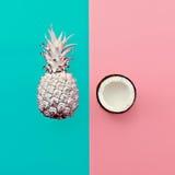 Vaniljfruktdesign Blandningananas och kokosnöt Arkivfoto