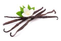 Vaniljpinnar med blomman och bladet som isoleras på vit bakgrund Royaltyfri Bild