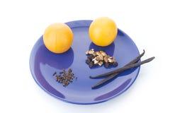 Vaniljsticks och apelsiner Royaltyfria Bilder