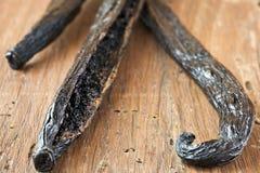 Vanilla. Fresh vanilla bean, close-up, short focus Stock Photos
