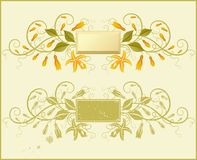 Vanilla. Floral elements for design. Vector illustration