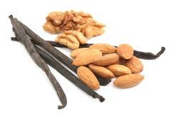 Vanilla, almonds and walnuts Stock Photos