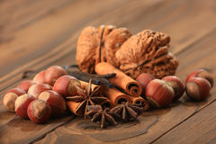 Vanilla, anisetree. Closeup of anise, cinnamon and vanilla pods on brown background Stock Images
