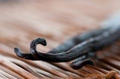 Vanilla bean. On brown background Stock Photos