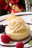 Vanilla Bean Cheesecake royalty free stock image