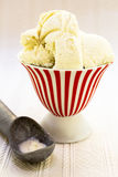 Vanilla Bean Ice Cream. A frozen treat of vanilla bean ice cream served in an ice cream parlor dish with scoop Royalty Free Stock Photography