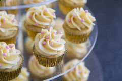 Vanilla bean mini cupcakes decorated with cyan. And pink candy beads on a clear tiered tray up close Stock Images