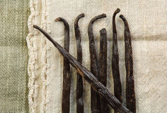Vanilla Beans. Laying on woven fabric in neutral colors Stock Images