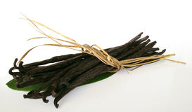 Vanilla Beans Royalty Free Stock Images
