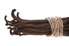 Vanilla beans Royalty Free Stock Image