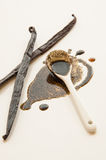 Vanilla beans and spoon with extract Royalty Free Stock Photos