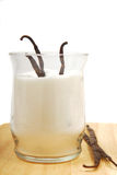 Vanilla beans in sugar Stock Photography