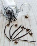 Vanilla beans. On textile background and jar with beans stock images