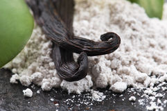 Vanilla Beans With Aromatic Sugar Royalty Free Stock Image