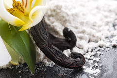 Vanilla Beans With Aromatic Sugar And Flower Stock Photo