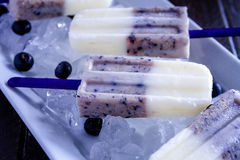 Vanilla, Blueberry and Coconut Milk Popsicles Royalty Free Stock Photo