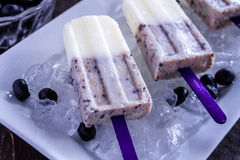 Vanilla, Blueberry and Coconut Milk Popsicles Stock Photo