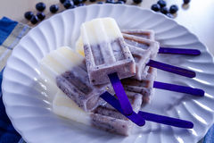 Vanilla, Blueberry and Coconut Milk Popsicles Royalty Free Stock Photography