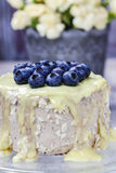 Vanilla cake decorated with blueberries Stock Image