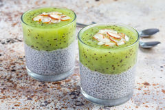 Vanilla chia pudding with kiwi, layered dessert, concrete background Royalty Free Stock Photography