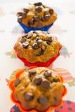 Vanilla choco muffins Stock Photos