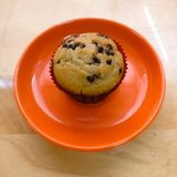 Vanilla with chocolate chips muffin on a bright orange plate royalty free stock image