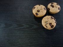 Vanilla and chocolate chips muffins royalty free stock image