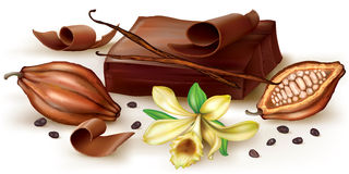 Vanilla chocolate and cocoa fruit. Chocolate block and curl with vanilla flower and cocoa fruit. Vector illustration Stock Images