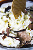 Vanilla and chocolate icecream Stock Images