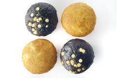 Vanilla and Chocolate Muffin Stock Photos