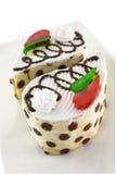 Vanilla chocolate sponge cake Stock Images