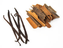 Vanilla and cinnamon. Vanilla beans and cinnamon sticks on white background Stock Photography