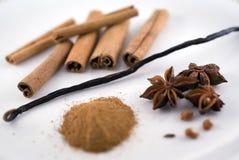 Vanilla and cinnamon Royalty Free Stock Photos