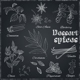 Vanilla, cinnamon, barberry, cardamom, vanilla, cloves Royalty Free Stock Image