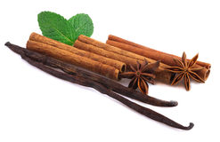 Vanilla, cinnamon sticks and mint. Vanilla, cinnamon sticks and mint isolated Stock Photos