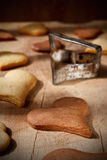 Vanilla and cocoa flavoured fresh cookies Royalty Free Stock Photos