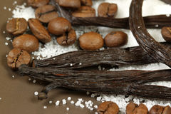 Vanilla and coffee beans Royalty Free Stock Image