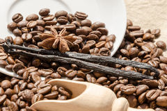 vanilla with coffee grains, cinnamon and aniseed Royalty Free Stock Photos