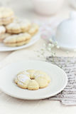Vanilla cookies Stock Photography