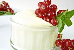 Vanilla cream Stock Images