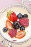 Vanilla cream with fruits stock photo