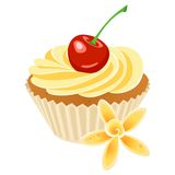 Vanilla cupcake. Illustration of vanilla cupcake with a flower Royalty Free Stock Photos