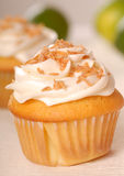 Vanilla cupcake with buttercream coconut. Freshly baked vanilla cupcake with lemon buttercream and toasted coconut royalty free stock photography