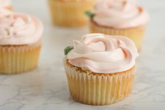 Vanilla Cupcake With Buttercream Rosette. On White Marble Table stock image