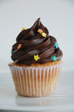 Vanilla cupcake with chocolate cover. Decorated with sugar stars Royalty Free Stock Photos
