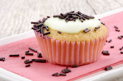 Vanilla cupcake with chocolate sprinkles Stock Photography