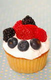 Vanilla cupcake with fresh berries Royalty Free Stock Images