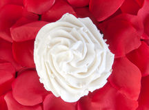 Vanilla cupcake and rose petals Stock Photo