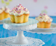Vanilla cupcake Royalty Free Stock Photo