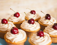 Vanilla cupcakes with butter cream frosting and a cherry on top Stock Images